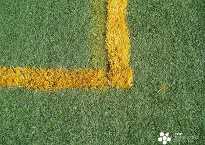 Asesoramiento y mantenimiento del campo de fútbol – Santa Cristina d'Aro