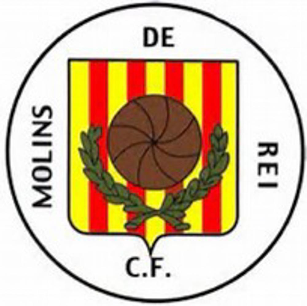 tce-gestio-organitzacio-lligues-futbol-molins-04