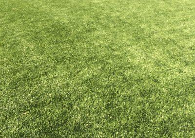 Informe estado actual Campo de Fútbol Municipal – Vilafranca del Penedès